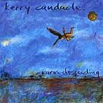 Kerry Candaele Icarus Descending