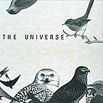 Universe 2010