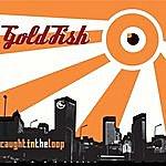 Goldfish Caught In The Loop