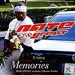Nate The Great Memories