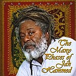 Jah Hammed The Many Phases Of Jah Hammed