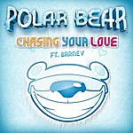 Polarbear Chasing Your Love