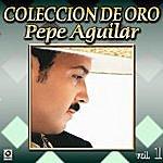Pepe Aguilar Botellita De Tequila