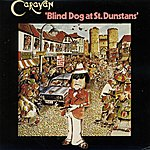 Caravan Blind Dog At St.Dunstans