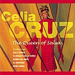 Celia Cruz The Queen Of Salsa