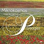 Orchestra Mikrokosmos Paysage
