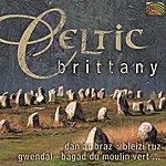 Dan Ar Braz (Brittany) Celtic Brittany