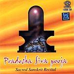 Prof.Thiagarajan & Sanskrit Scholars Pradosha Shiva Pooja