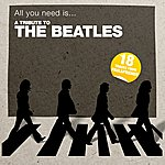 Paul & Friends All You Need Is... A Tribute To The Beatles