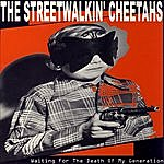 Streetwalkin Cheetahs Waiting For The Death Of My Generation