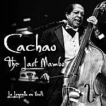 Cachao The Last Mambo