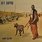 Amos Galpin Hey Copper