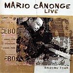 Mario Canonge Rhizome Tour