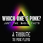 Which One's Pink? Pink Floyd Tribute: Just The Basic Facts