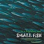 Small Fish ...In A Big Blue Sea