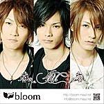 Bloom 4u