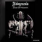Abiogenesis Slice Of Heaven