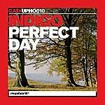 Indigo Perfect Day