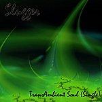 Slugger Transambient Soul - Single
