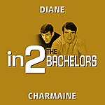The Bachelors In2the Bachelors - Volume 3