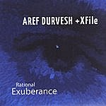 Aref Durvesh Rational Exuberance