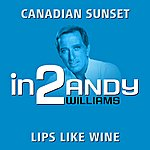 Andy Williams In2andy Williams - Volume 1