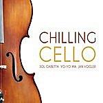 Yo-Yo Ma Chilling Cello
