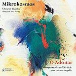 Orchestra Mikrokosmos O Adonaï : Musiques Sacrées Du Xxème Siècle Pour Choeur A Capella