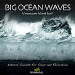 Tim Nielsen Big Ocean Waves - Vancouver Island Surf - Single
