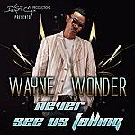 Wayne Wonder Never See Us Falling