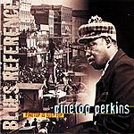 Pinetop Perkins Pïnetop Is Just Top (Blues Reference (Recorded In Switzerland 1976))