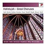 Claus Peter Flor Hallelujah - Great Choruses