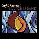 Branches Light Eternal