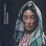 John Eliot Gardiner Bach Cantatas, Vol. 25: Dresden / Sherborne