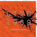 The Wedding Present Live 1989