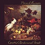 Procol Harum Exotic Birds And Fruit
