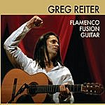Greg Reiter Flamenco Fusion Guitar