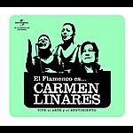 Carmen Linares Flamenco Es... Carmen Linares