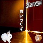Siva White Rabbit