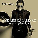 Andrés Calamaro Libros Sapienciales