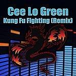 Cee-Lo Green Kung Fu Fighting (Remix)