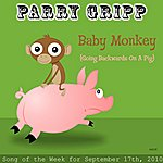 Parry Gripp Baby Monkey (Going Backwards On A Pig)