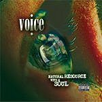 Voice Natural Resource With A Soul