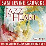 Sam Levine Sam Levine Karaoke - Jazz From The Heart (Instrumental Tracks Without Lead Track)