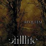 Still Life Requiem