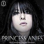 Princess Anies Au Carrefour De Ma Douleur