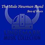 The Mule Newman Band Sea Of Blues