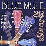 Blue Mule 23 Strings