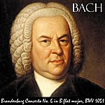 Johann Sebastian Bach Brandenburg Concerto No. 6 In B Flat Major, Bwv 1051. Allegro. Great For Baby's Brain, Mozart Effect And Pure Enjoyment.