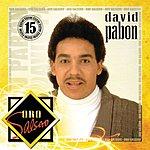 David Pabon Oro Salsero